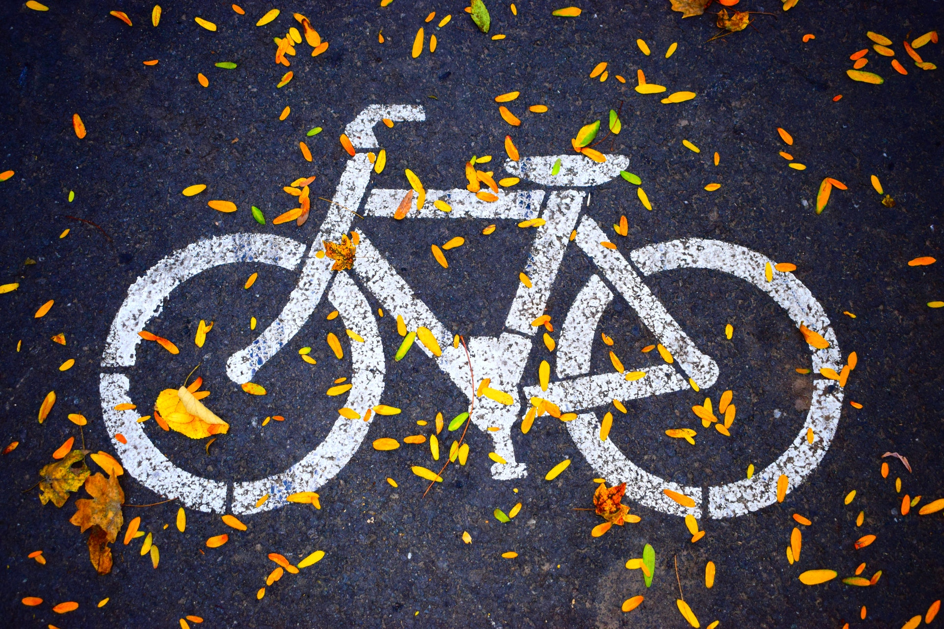 6 Questions You Must Ask Before Hiring a Bicycle Accident Attorney